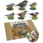 Garden Birds Card Model - Pack of 6