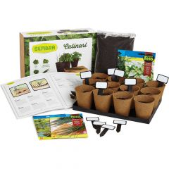Herbs Growing Set 1