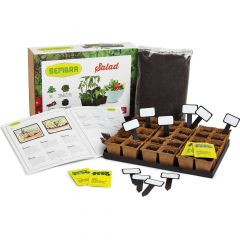 Salad Growing Set