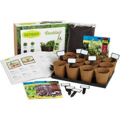 Herbs Growing Set 2