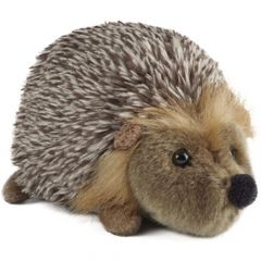 Wildlife Friend - Hedgehog