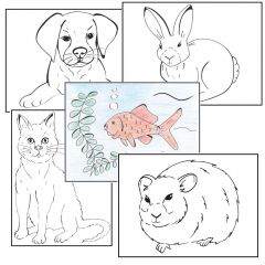 Simple Colouring for Adults - Pets - Set of 48