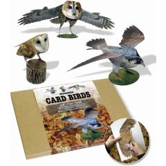 Birds of Prey Card Model - Pack of 3