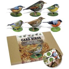 Garden Birds Card Model - Pack of 6