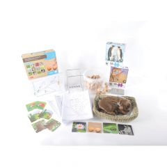 Dementia Bumper Activity Pack